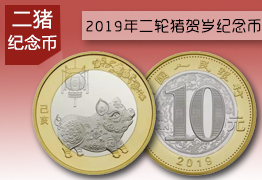 2019猪纪念币